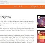 Jasa Pembuatan Website Bisnis Paytren
